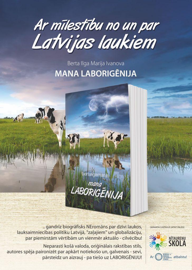 Laborigenija_A3_NSk